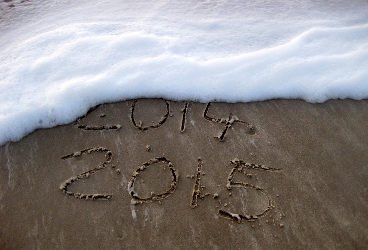 Einen guten Rutsch ins neue Jahr2015!