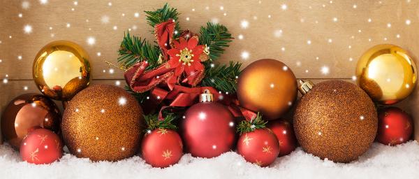 Ein frohes, besinnliches und friedvollesWeihnachtsfest!