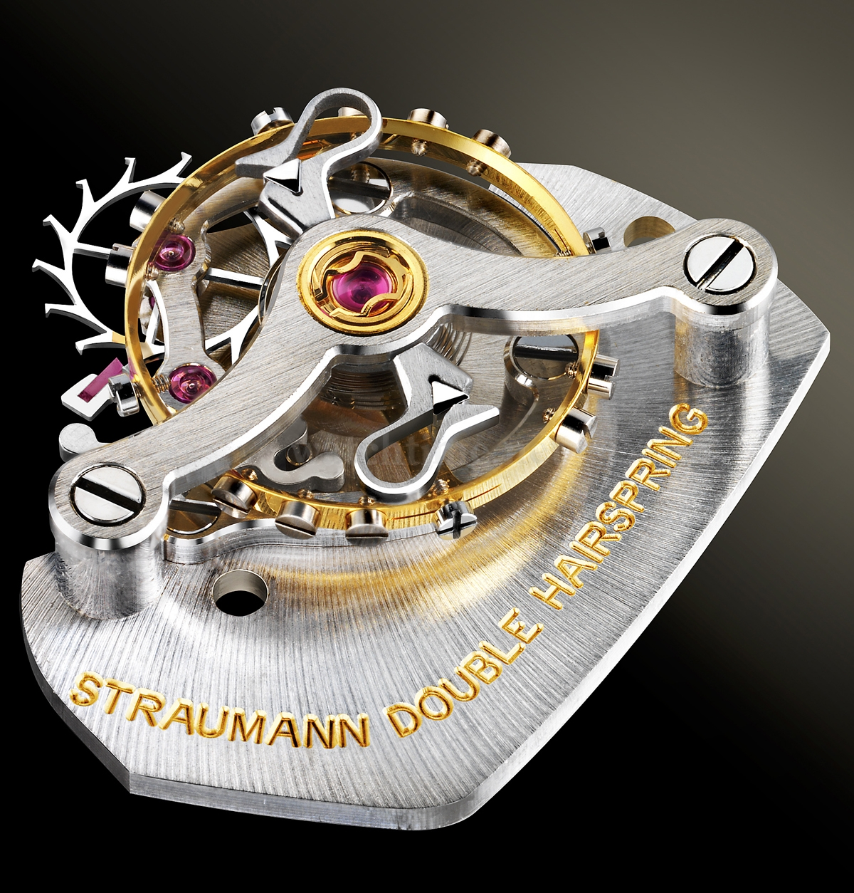 straumann-double-hairspring_web1